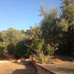 Giardino perimetrale